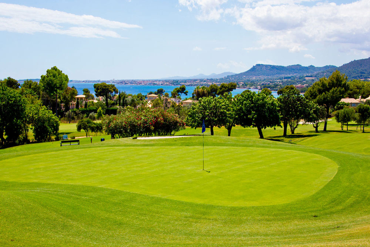 Property For Sale at Golf Son Servera and environment