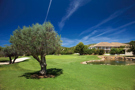 Andratx Golf Club Golf Course Description and Properties