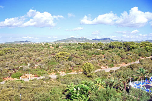 Apartment Mallorca Apartment for sale buy property market Real Estate Portals Spain