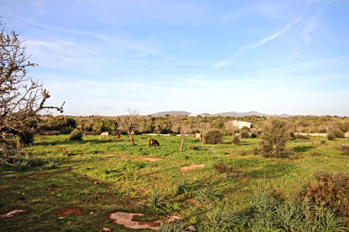 Cala Santanyi Country Property for sale in South East of Mallorca