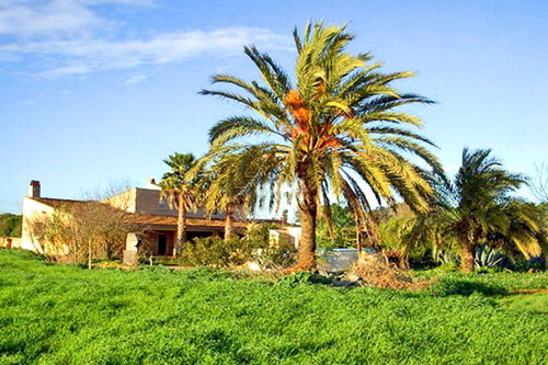 Finca Campos buy mill homes Fincas Mallorca Property Real Estate offers