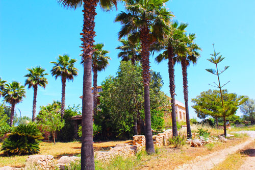 Felanitx villas for sale and historic property