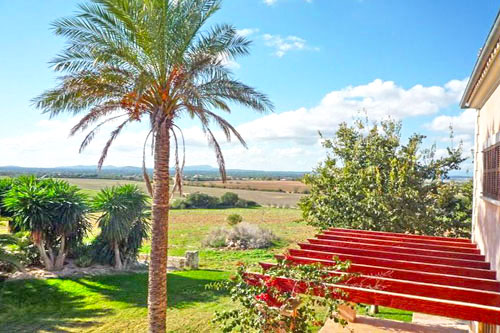 Buy Rent Finka Felanitx finca mallorca real estate Mallorca