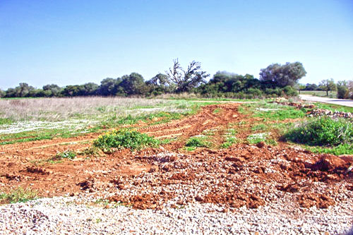 Hotel plot of Land for sale in Sa Rapita for four-Star Hotel