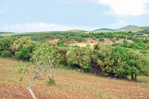 Mallorca Plot for sale, rent and buy real estate in Spain
