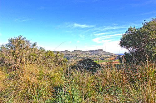 Mallorca finca plot with sea view sale in northeast
