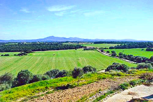 Porreres property as historic estates and villas for sale in Mallorca