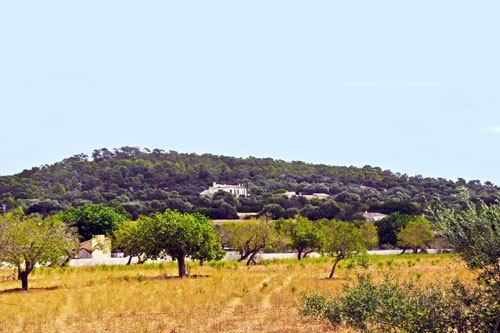 Porreres property with historical background for sale in Mallorca