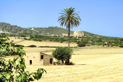 Porreres estate for sale with twelve plots finca in Mallorca