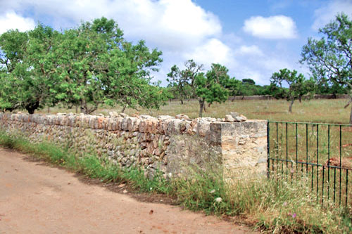 Ses Salines Finca land, rural land with planning permission
