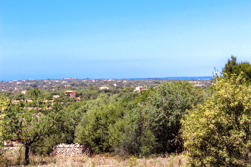 Ses Salines property such as land or fincas for sale in Mallorca