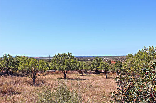 Ses Salines sea view plot for sale in the southeast of Mallorca