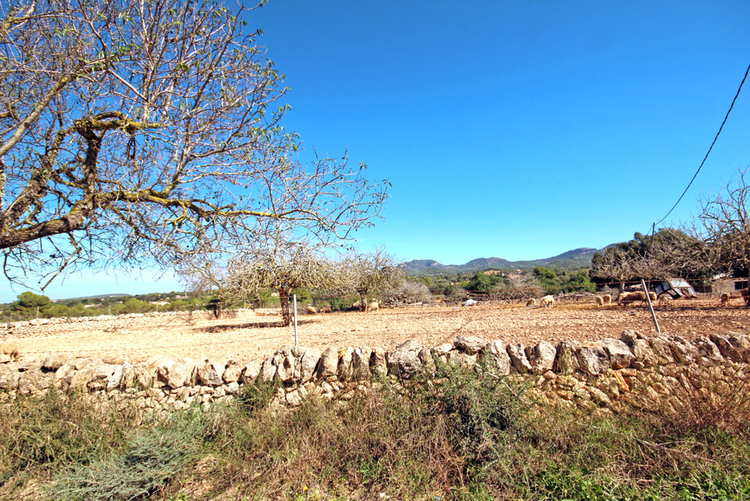 Buy Finca Cas Concos-land overlooking the surrounding countryside