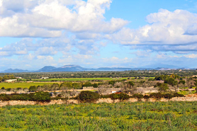 Ses Salines finca plot with building power and water