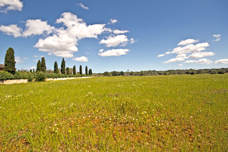 Plot for sale in Campos in the southeast of Mallorca