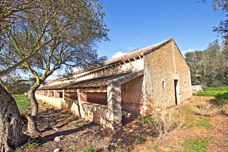 Campos Finca to renovate with a lot of country for Sale in Mallorca