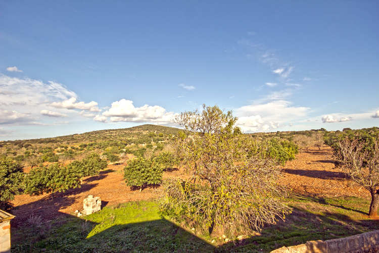Finca building permit imit m northeast of Mallorca for sale