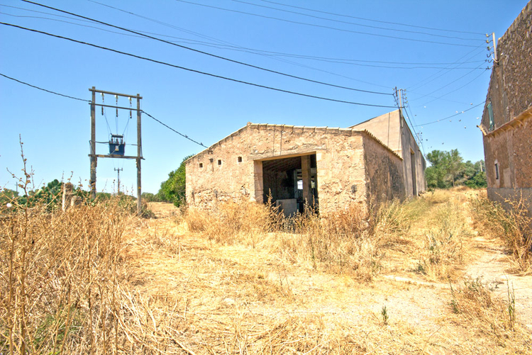 Finca to renovate with electricity and own well in Campos buy