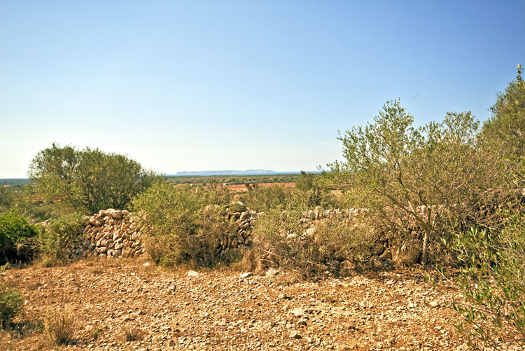 Sea view Finca in Ses Salines in the southeast of Mallorca for sale