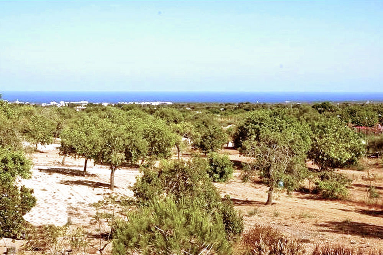 Plot of land for sale with sea view on the Gulf Vall D'or