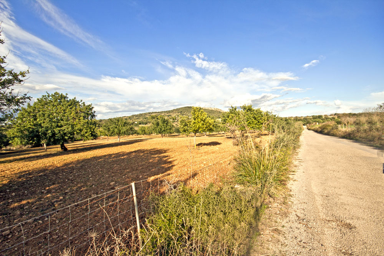 Plot in a quiet location with planning permission for sale San Lorenzo