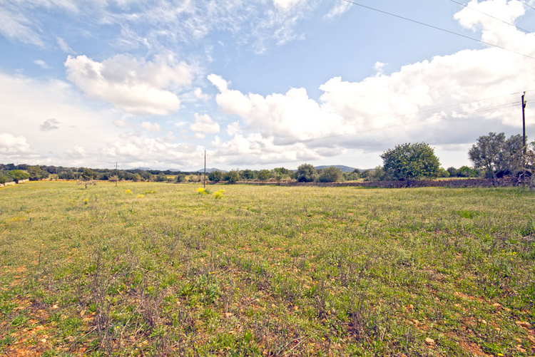 Cheap Land for sale in Campos