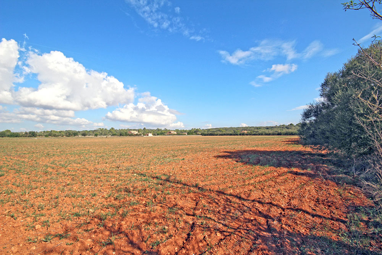 Campos Land for sale in South East of Mallorca