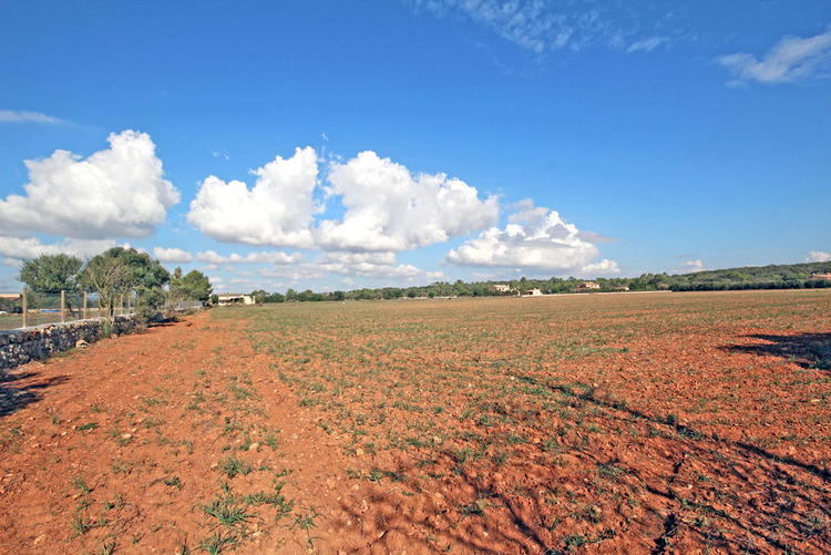 Campos Finca Land for Sale in Mallorca