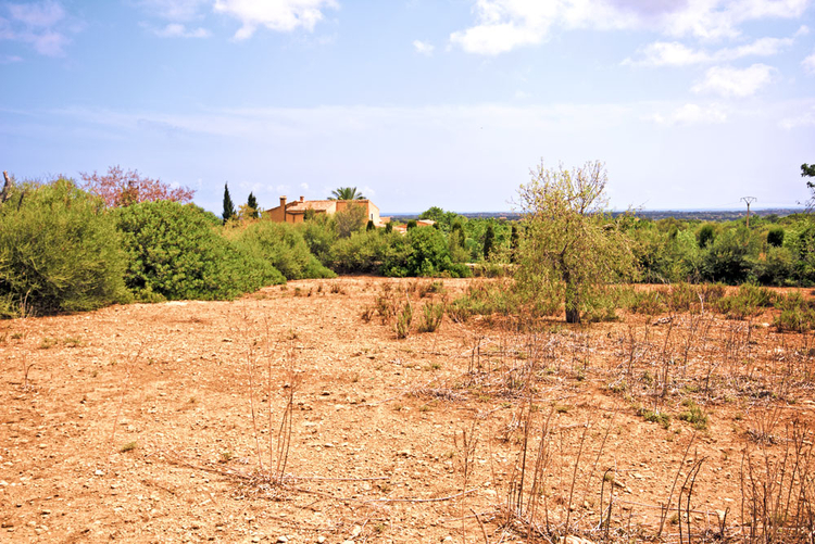 Buy plot with sea view in Santanyi in the southeast of Mallorca