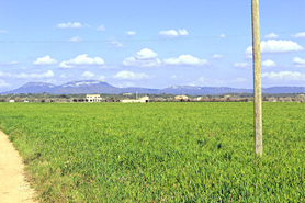 Finca Plot for sale in Campos