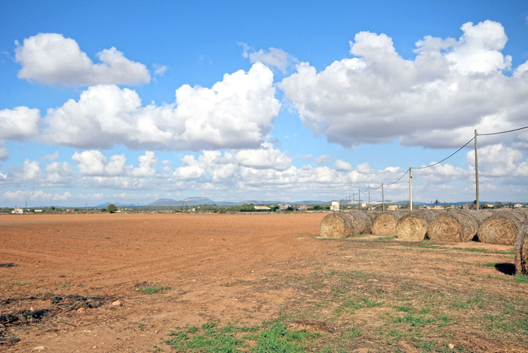 Campos Fincas for sale through broker in the southeast of Mallorca
