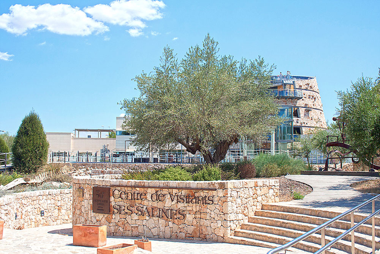 Ses Salines Properties for sale or for rent in Mallorca