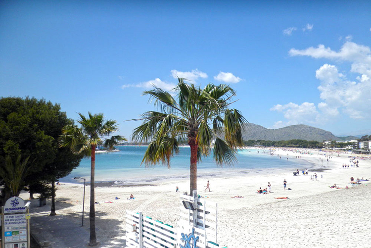 Alcudia beach description and pictures