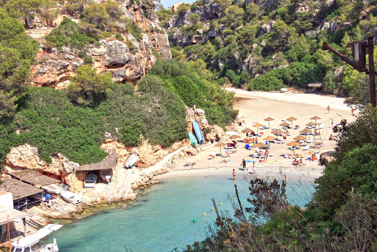 Mallorca Cala Pi beach and useful information about the environment