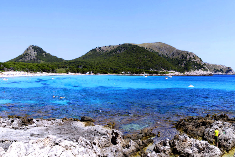 Information for beach Cala Fonoll in Andratx Mallorca