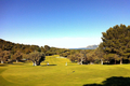 Golf Course Golf Pollensa
