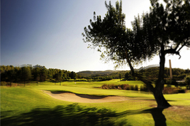 Immobilien kaufen am Golf Son Muntaner in Palma de Mallorca