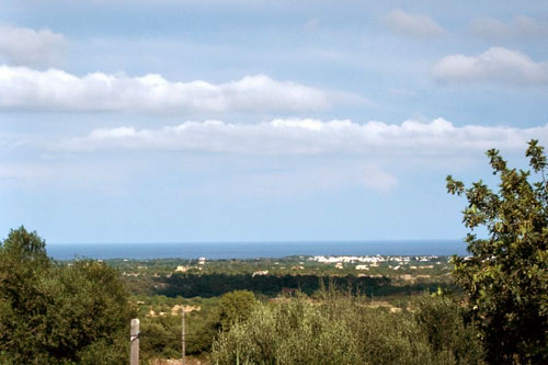 Mallorca Finca for long term rental in the South East