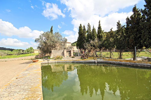 Porreres finca ruin to renovate with fountains and plenty of plot