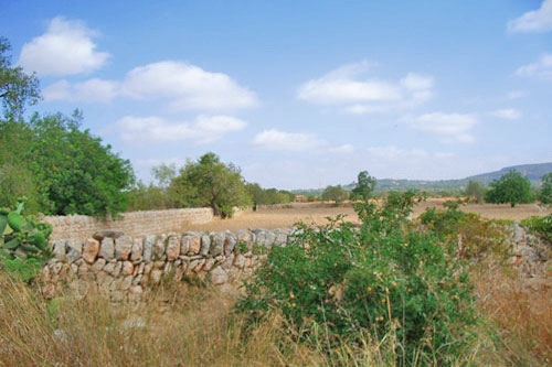 commercial plot Santanyi, Commercial Properties in Mallorca for sale