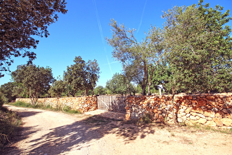 Cas Concos plots of land for sale in Mallorca