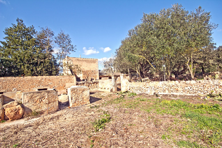 Campos buy a Finca Ruin with electricity and own well