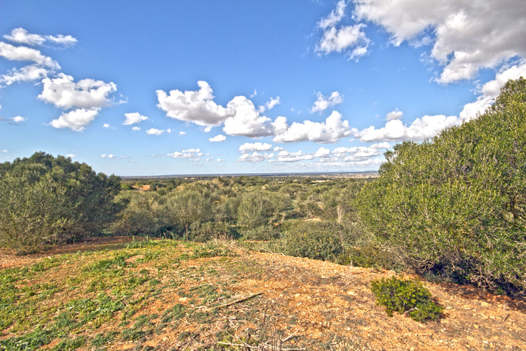 Plot with sea views for sale in the southeast of Mallorca