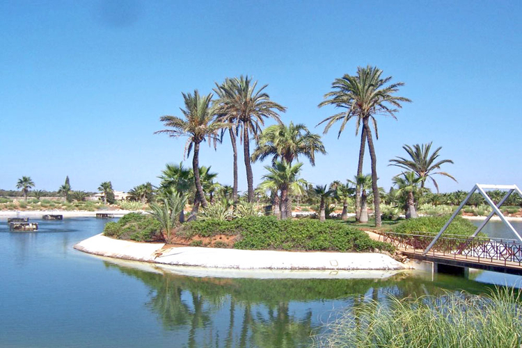 Ses Salines Mallorca Real Estate Agent for sale or rent real estate